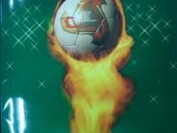 我的收藏——足球邮票(2002世界杯纪念系列)