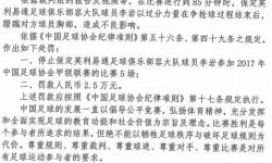 处罚:保定容大李岩停5场 或于主场战丽江时回归