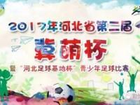 第二届冀萌杯明日开展 网络直播开幕式 人气投票已开启