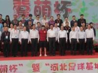 """第二届""""冀萌杯""""青少年足球比赛正式开赛 副省长王晓东开球"""